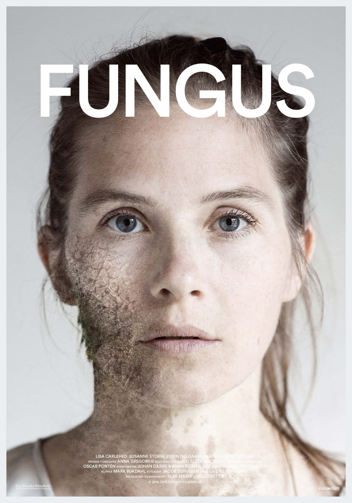 fungus_1
